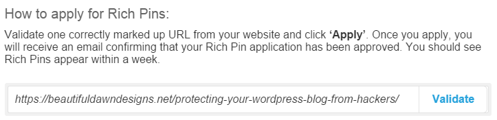 rich pins validator