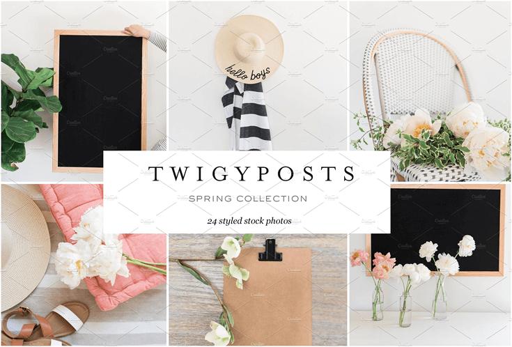 twigy posts