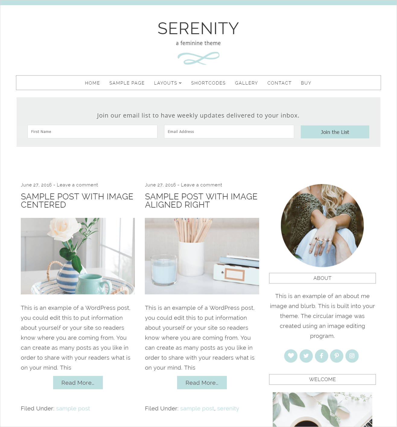 This image has an empty alt attribute; its file name is serenity-wordpress-theme-demo.png