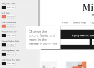 theme-customizer-minimalist