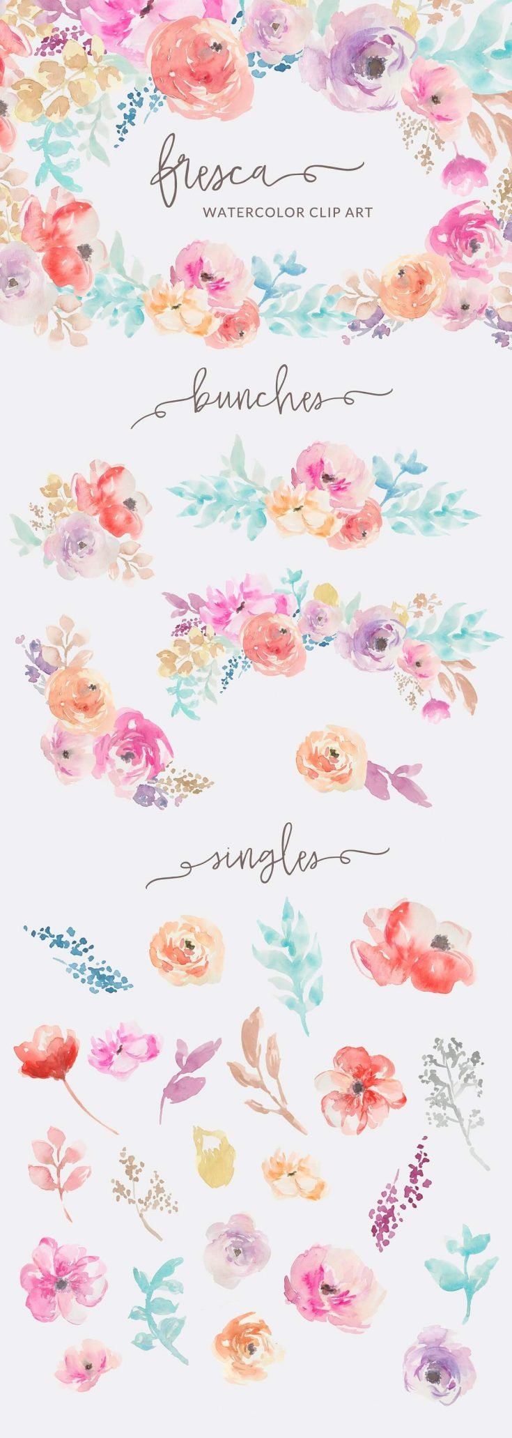 Fresca Watercolor Flower Clip Art Includes 4 Bouquets And 48 Other Individual PNG Images On Transparent Backgrounds