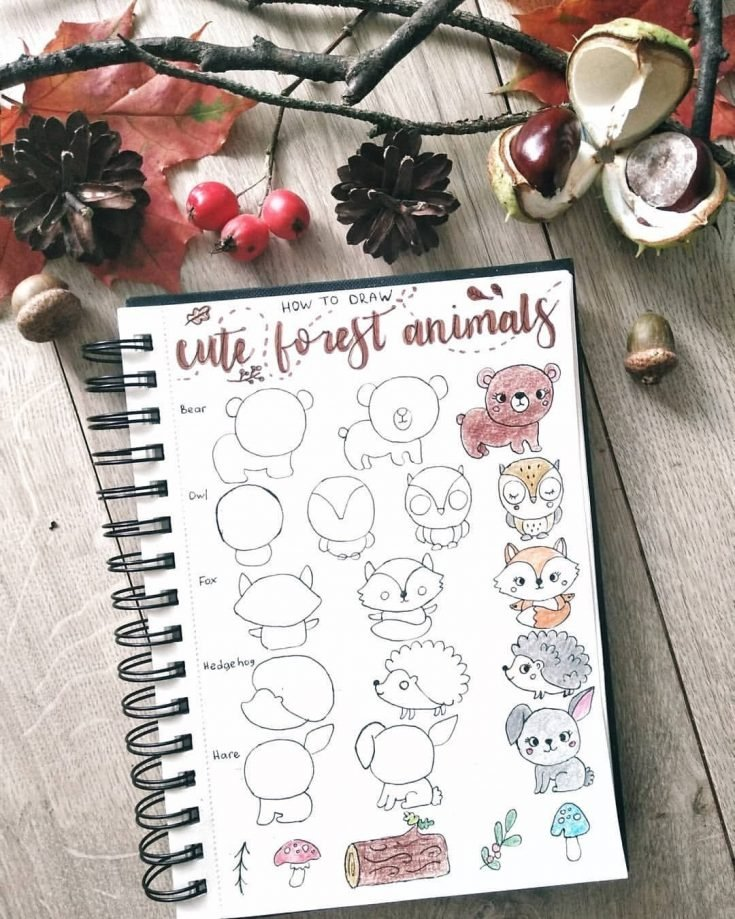 HOW TO DRAW CUTE FOREST ANIMALS
