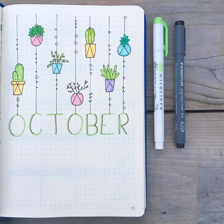 OCTOBER HANGING CACTI AND SUCCULENTS