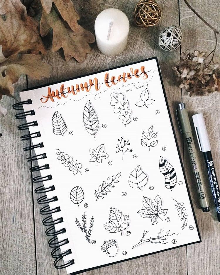Autumn leaves doodles