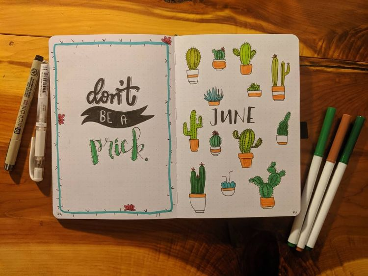 CACTUS COVER PAGE