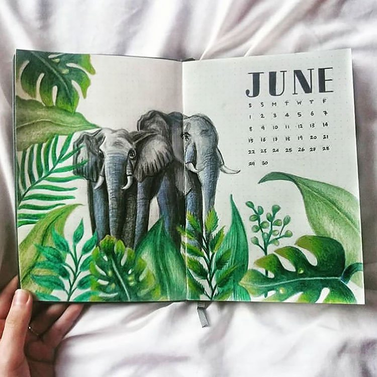 JUNE COVER WITH ELEPHANTS