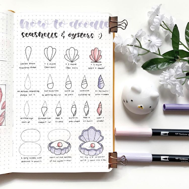 HOW TO DRAW SEASHELLS AND OYSTERS