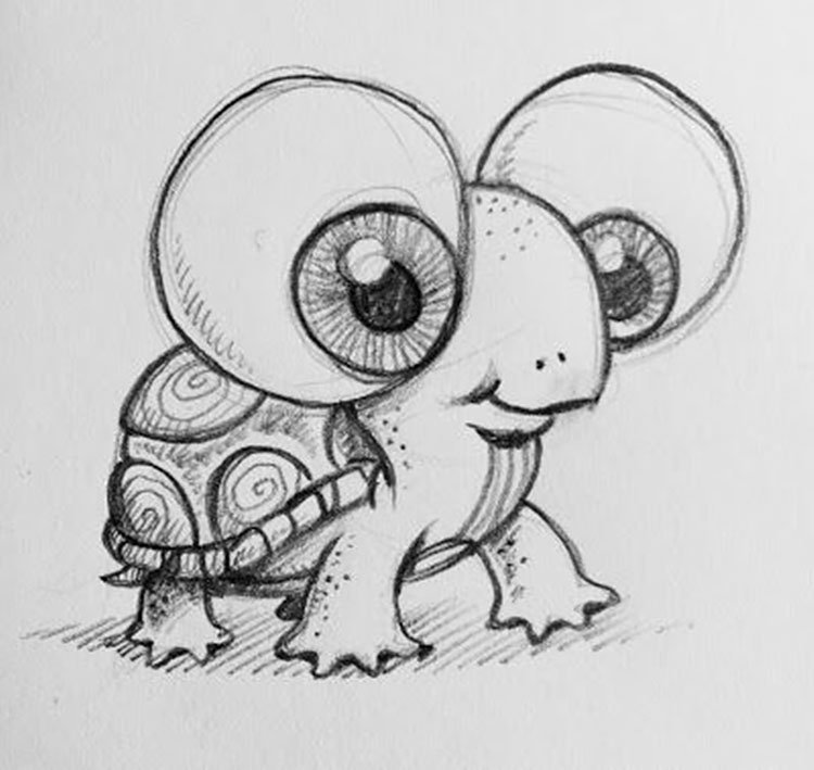 BABY TURTLE DRAWING