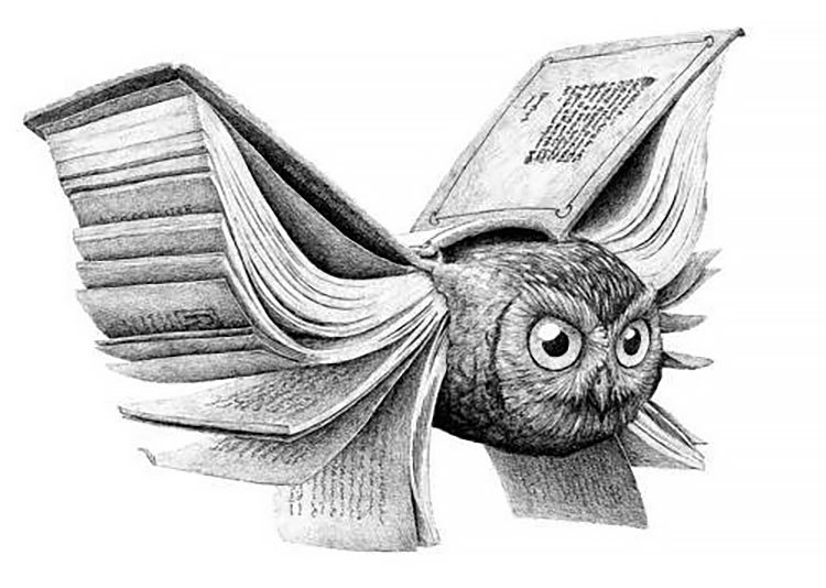 OWL WITH BOOK WINGS