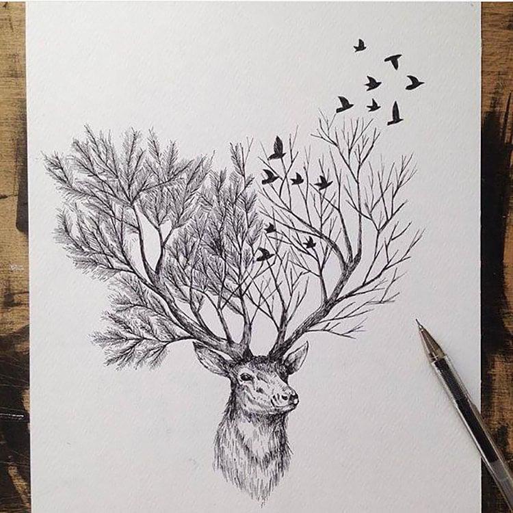 deer and antlers