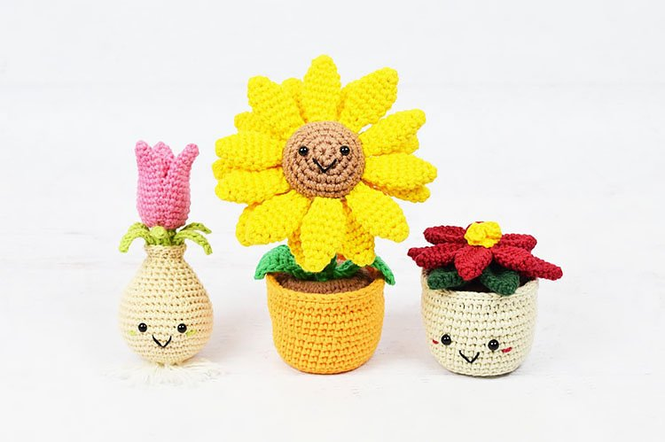 POTTED FLOWERS AND TULIP BULB