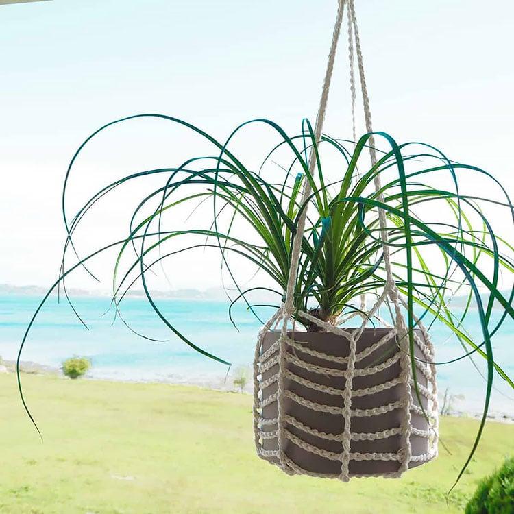 easy plant hanger