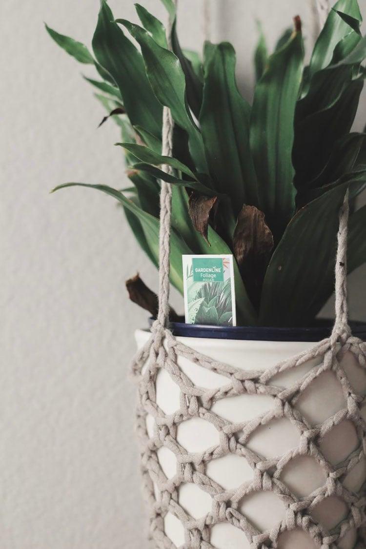 boho crochet plant hanger