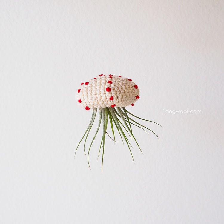 crochet air plant jellyfish