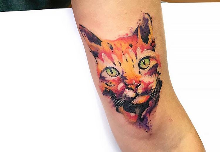 watercolor cat face