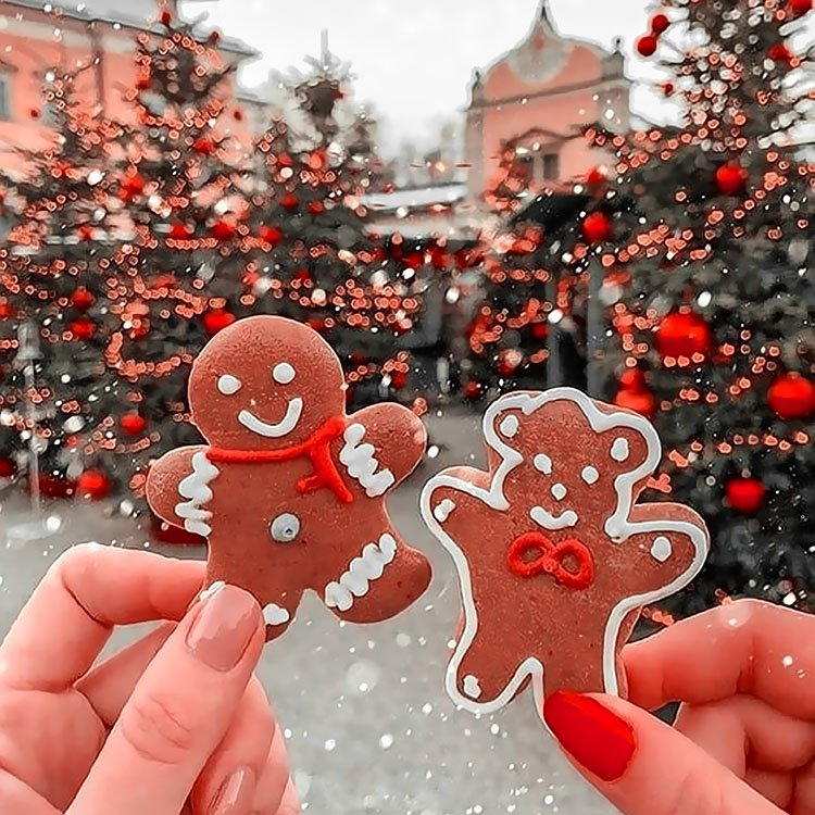 GIRL HOLDING GINGERBREAD COOKIES