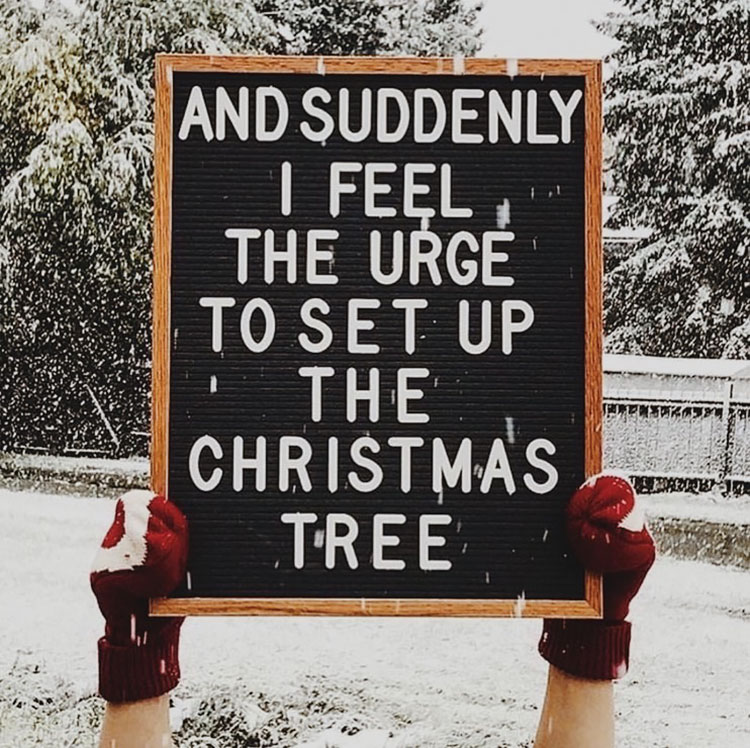 CHRISTMAS LETTERBOARD QUOTE