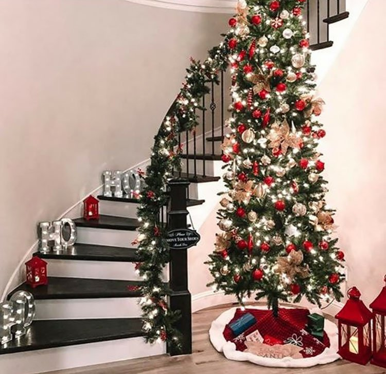 SKINNY TREE NEAR STAIRS