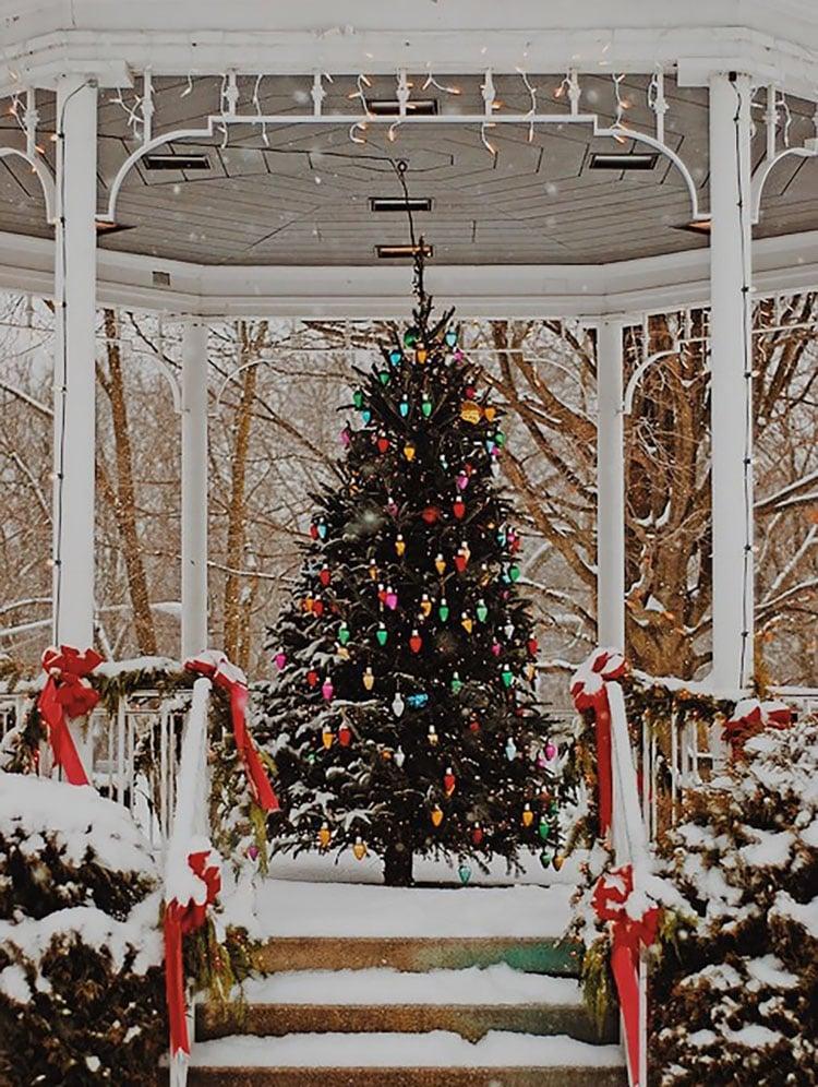 CHRISTMAS TREE IN GAZEBO