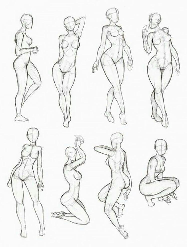 WOMAN'S BODY ANATOMY