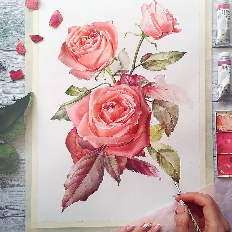 large rose painting