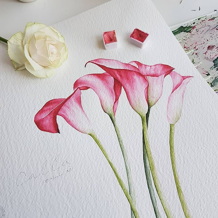 calla lily flower painting