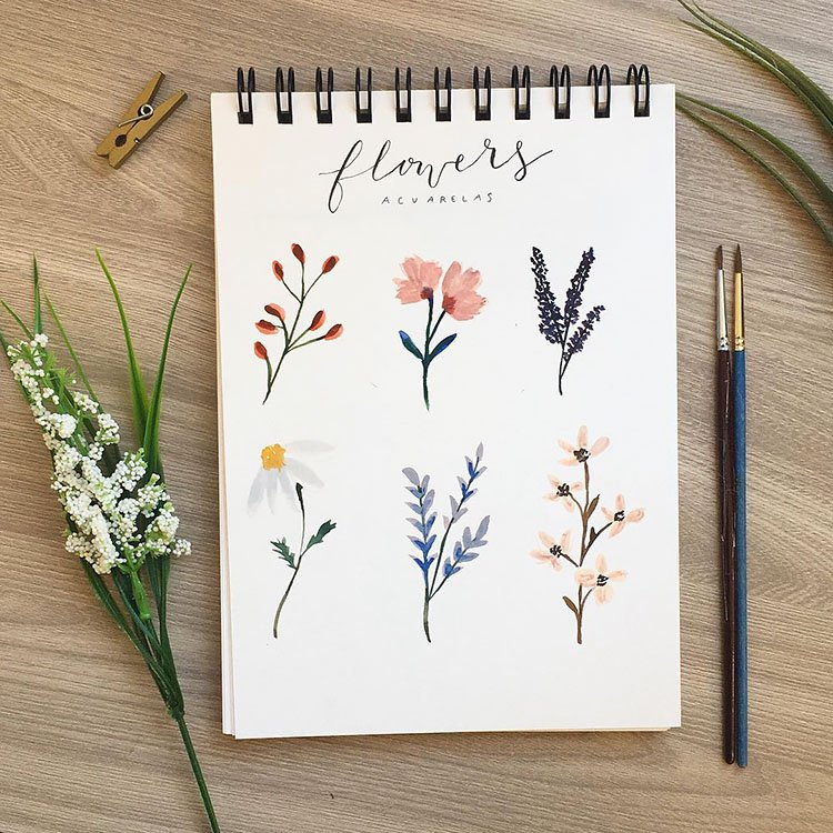 SIX DIFFERENT WATERCOLOR FLOWERS
