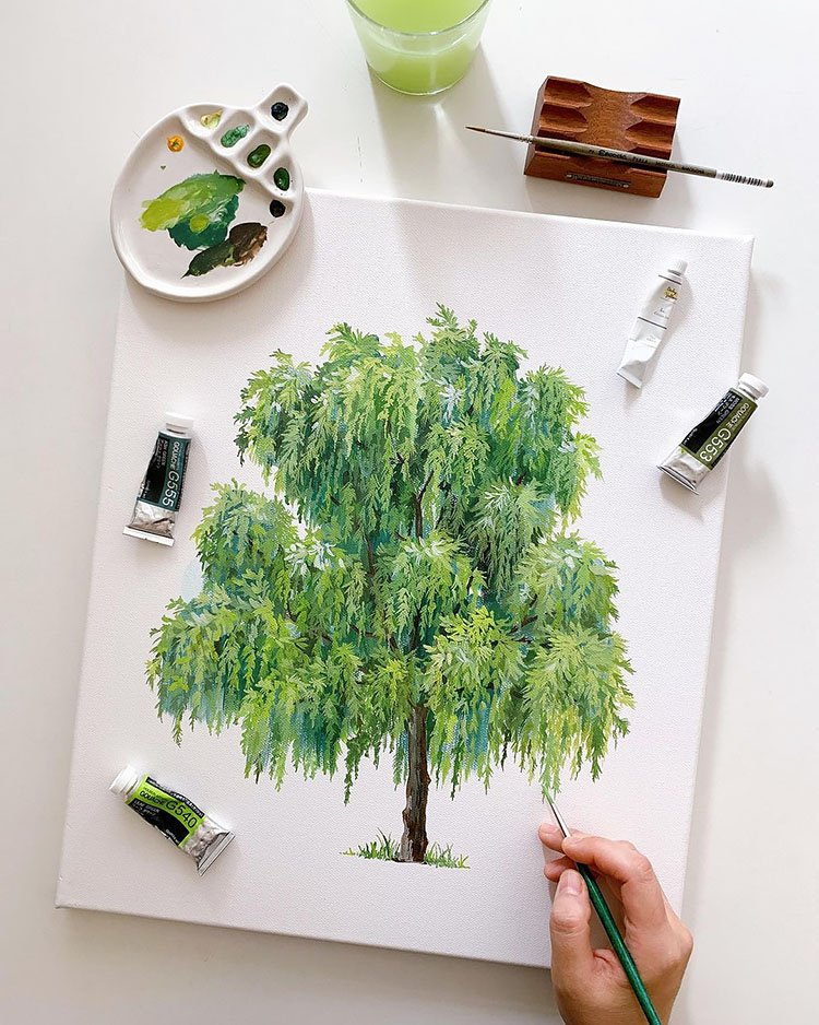 watercolor willow tree