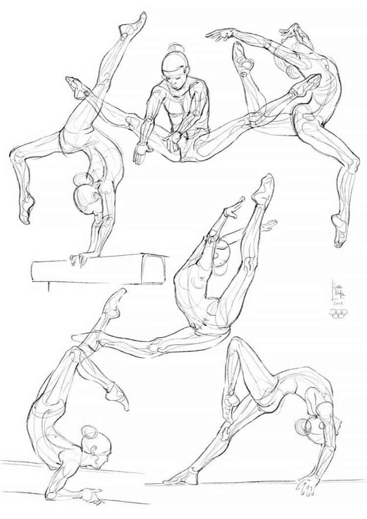 gymnastics anatomy