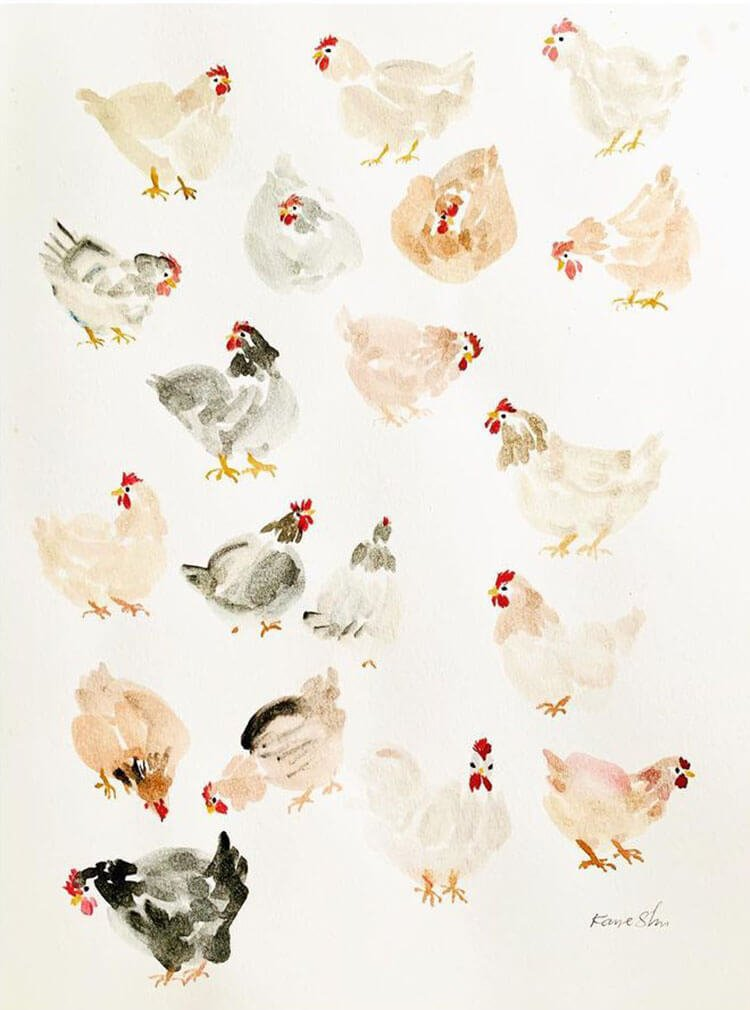 watercolor chickens
