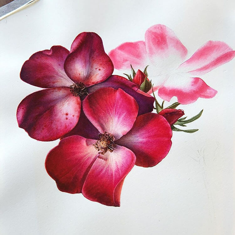 bright red flower watercolor painting