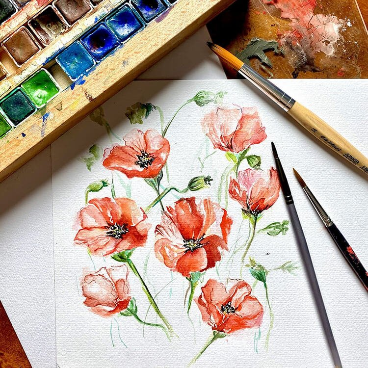 poppy flowers watercolor painting