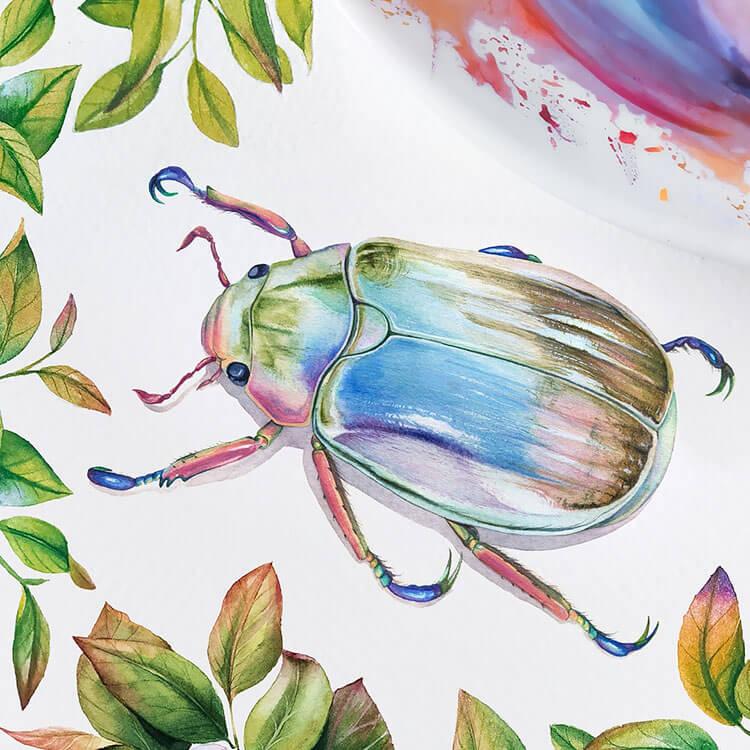 beetle watercolor painting