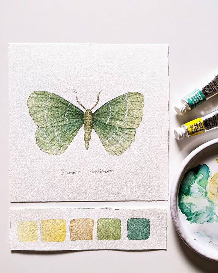 watercolor butterfly painting ideas 15