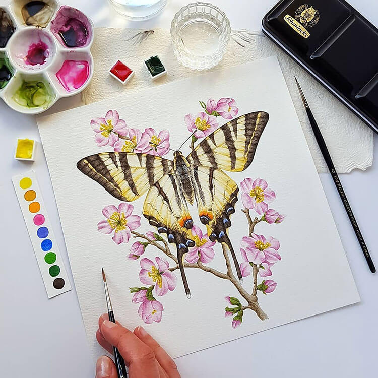 watercolor butterfly painting ideas 14