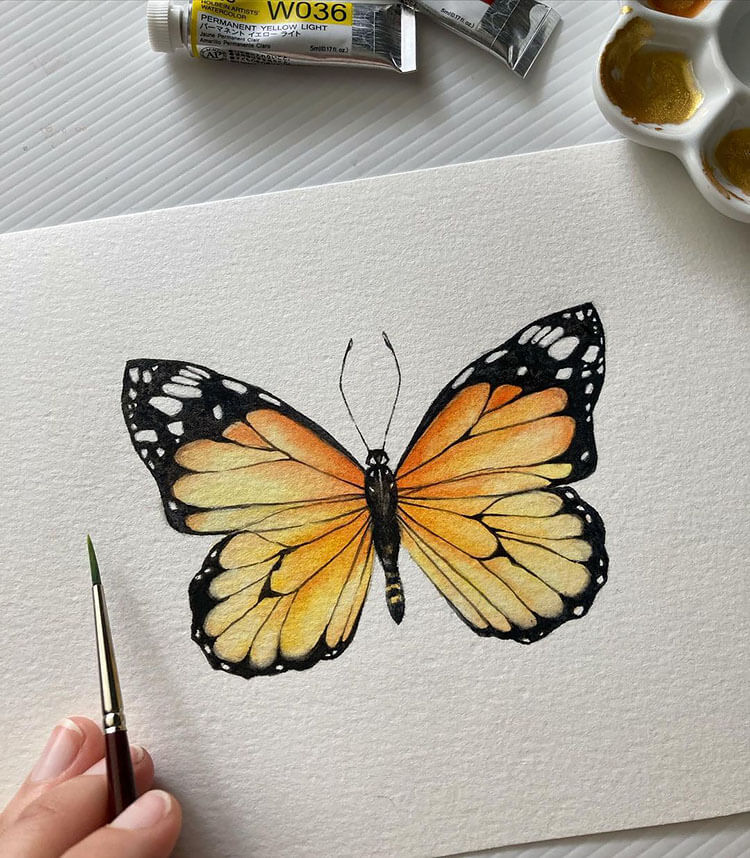 watercolor butterfly painting ideas 20