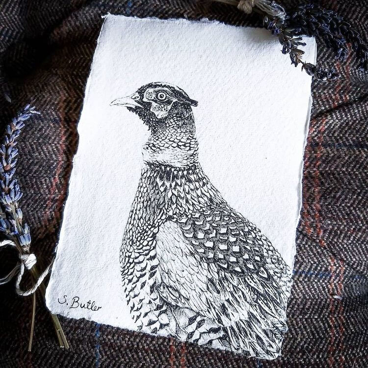 PEASANT BIRD