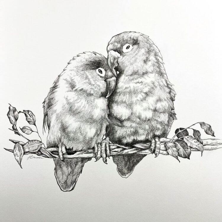 LOVEBIRDS DRAWING IDEA