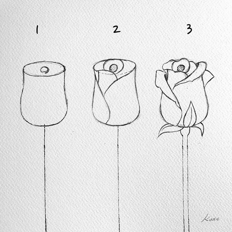 dibuja una rosa en 3 pasos