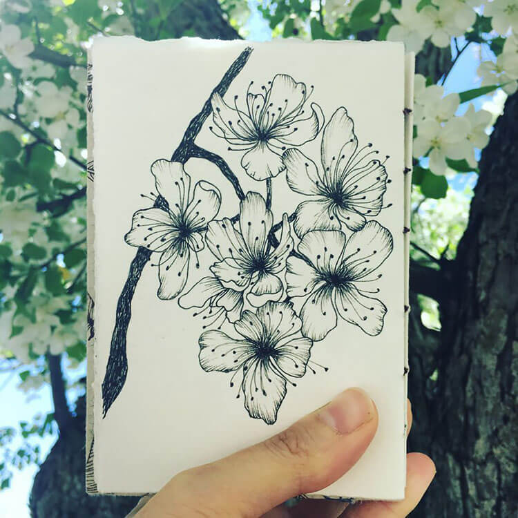 holding cherry blossom drawing
