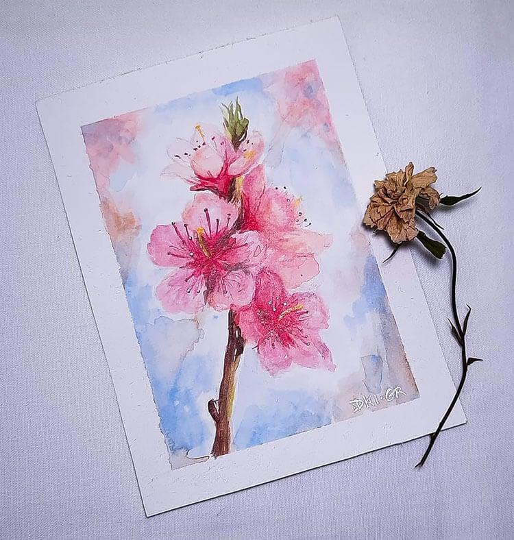watercolor sakura painting