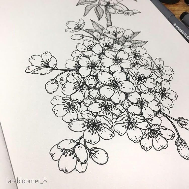 cute sakura drawing