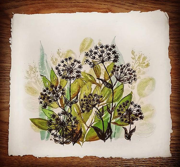 black dandelions