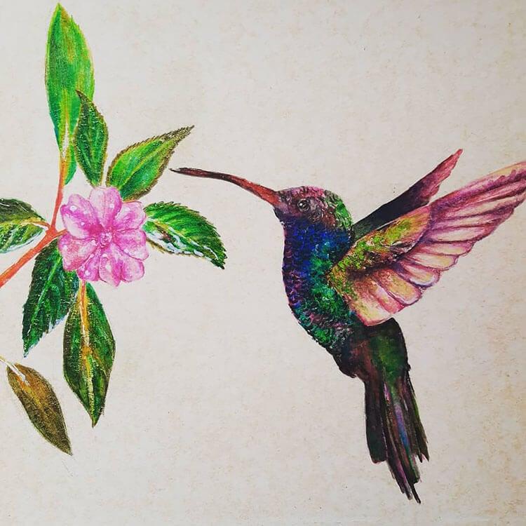 pintura de colibrí