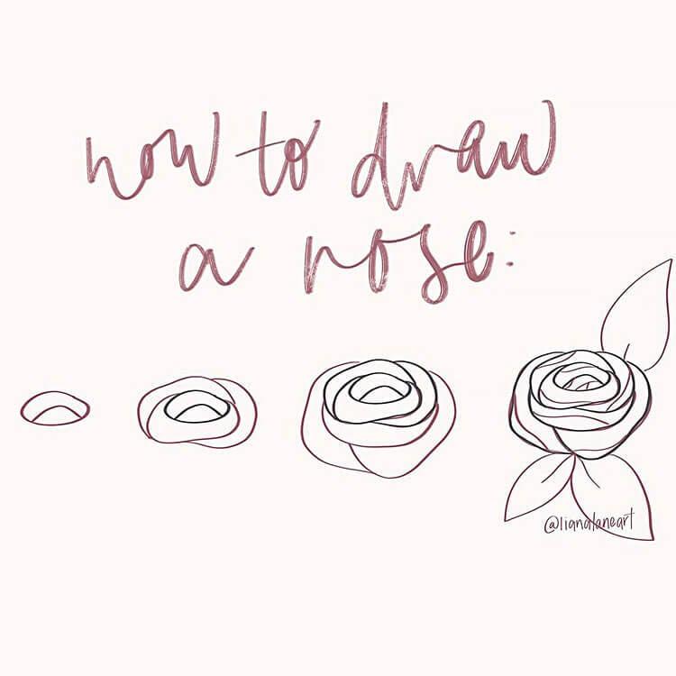 como dibujar una rosa
