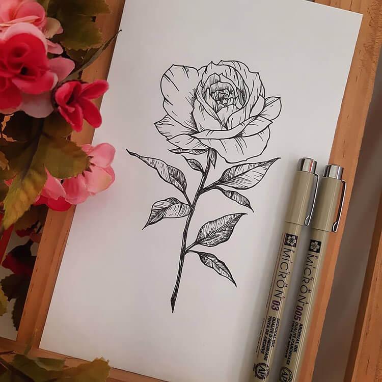 dibujo de rosa de arte lineal
