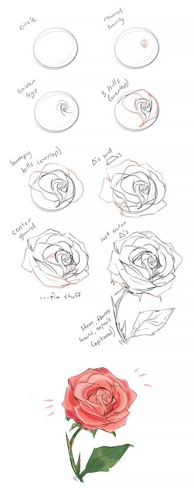 tutorial detallado de cómo dibujar rosa