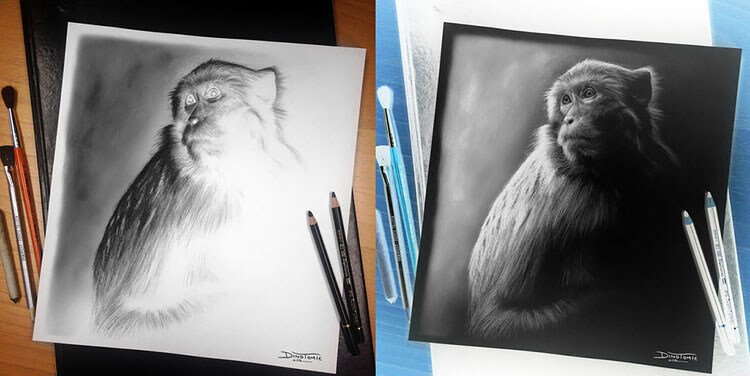 inverted monkey drawing