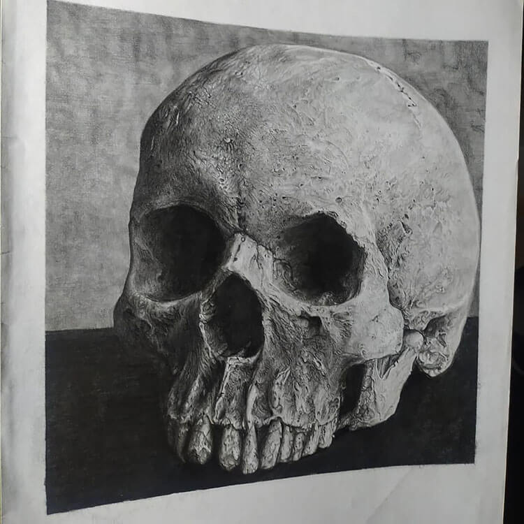 realistic skull drawing