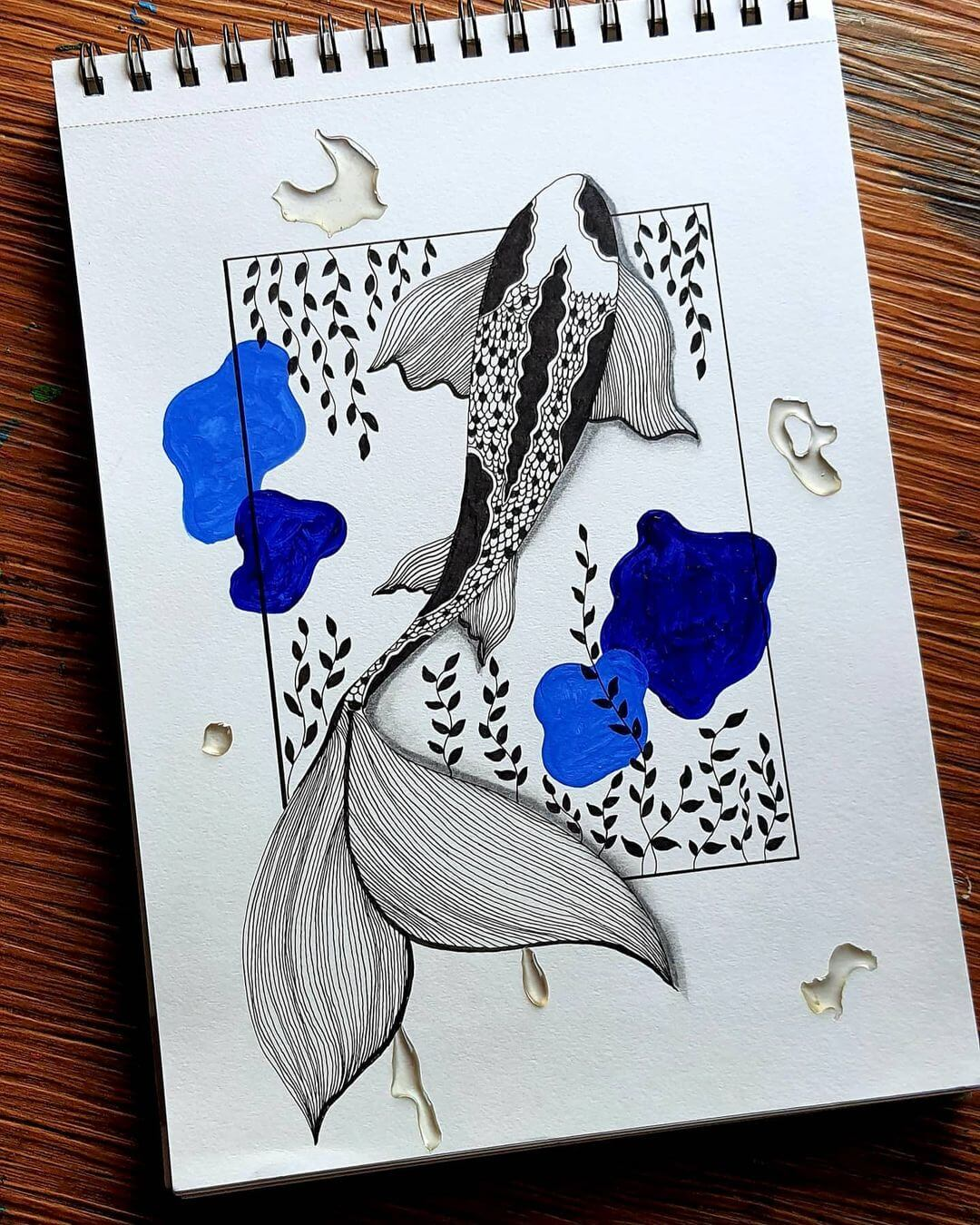 koi fish with blue water